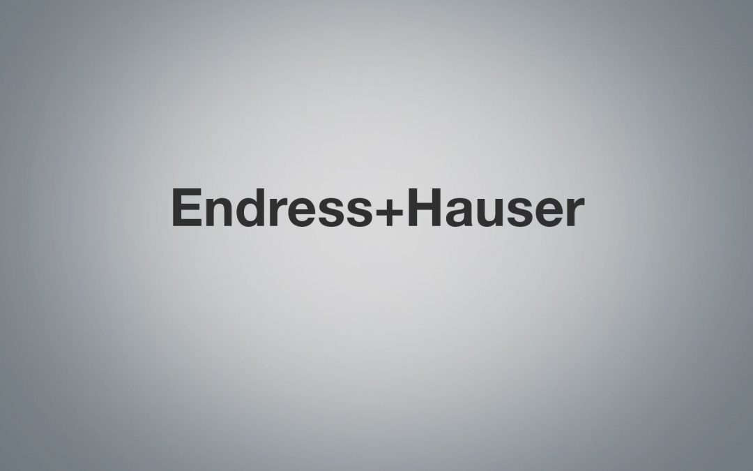 Endress+Hauser – Improving SAP Engineering Control Center with the SAP Continuous Influence Program