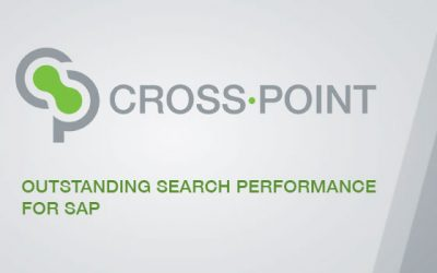 CROSS·POINT Outstanding Search Performance for SAP
